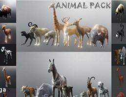 مجموعه حیوانات وحشی