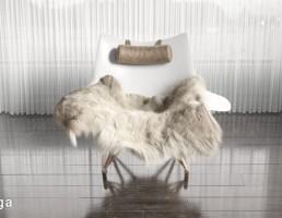 صندلی + پوست حیوانات