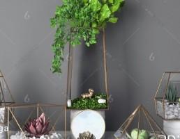 مدل سه بعدی گیاهان دکوری